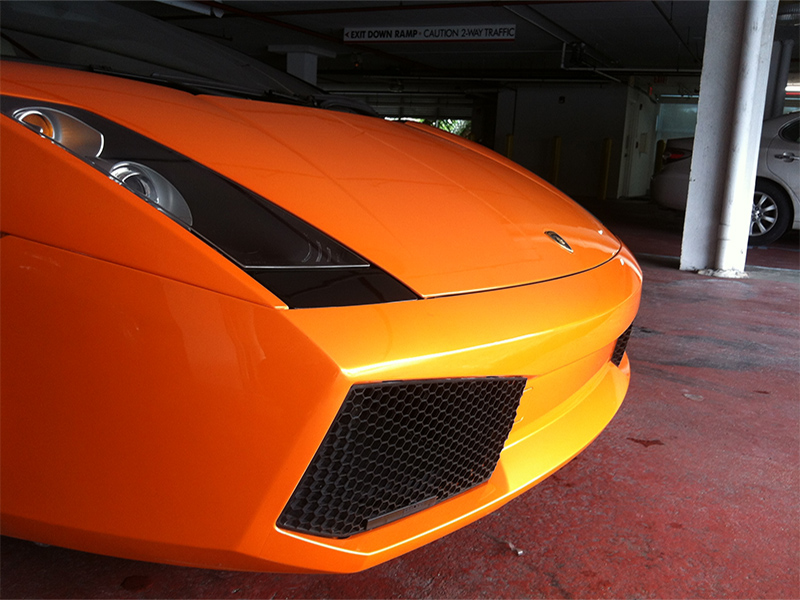 paint-protection-tint-city